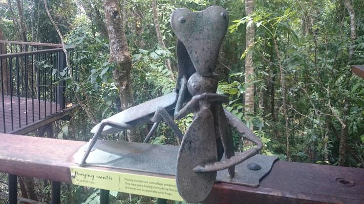 Kuranda - バロン滝に向かう遊歩道 遊歩道には沢山のオブジェがありました