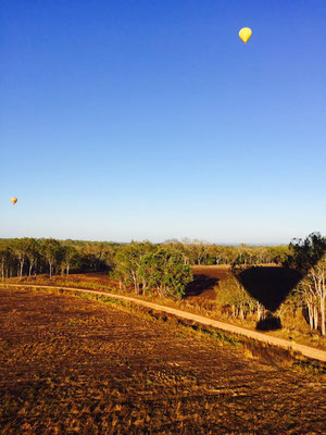 Mareeba hot air balloon - 空気が澄んでいてとても気持ちのいい朝です。