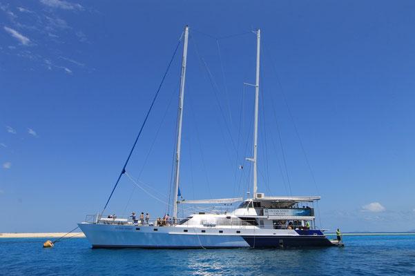 Great Barrier Reef - ミコマスケイツアーを毎日催行しているオーシャンスピリット号