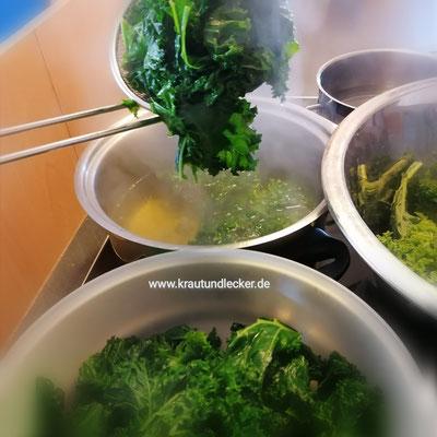 Den gewaschenen und von harten Strünken befreiten Grünkohl in kochendem Salzwasser portionsweise etwa 3 Minuten blanchieren. Herausnehmen und abkühlen lassen.