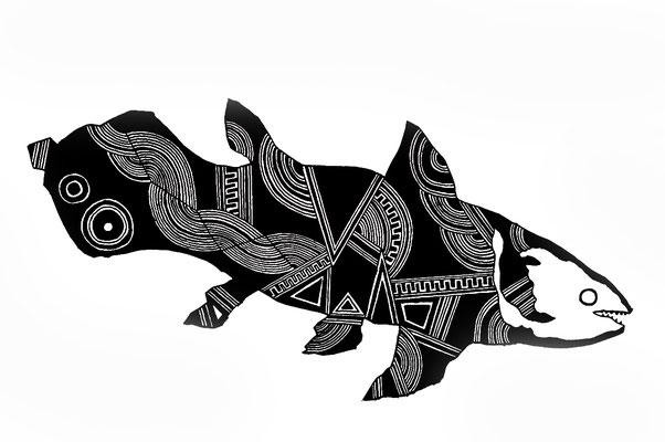 シーラカンス/coelacanth