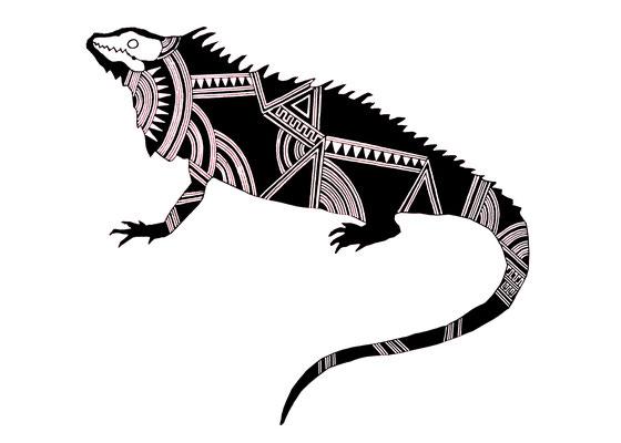 グリーンイグアナ/green iguana