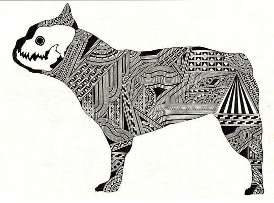 フレンチブルドッグ/french bulldog
