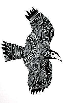 鷹/hawk