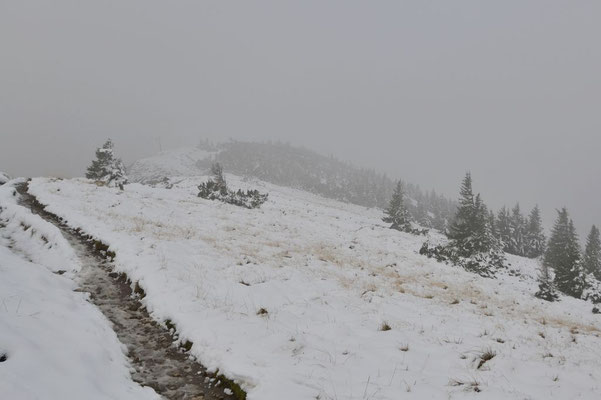 Auf dem Höhenweg Richtung Benediktenwand wird es langsam immer weißer.