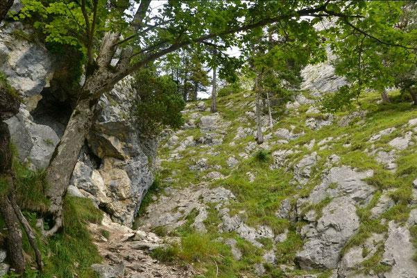 Durch das steinige Gelände helfen ein paar Seile