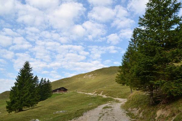 Nach steilem Beginn, schlängelt sich der Weg zunächst sanft am Hang entlang …