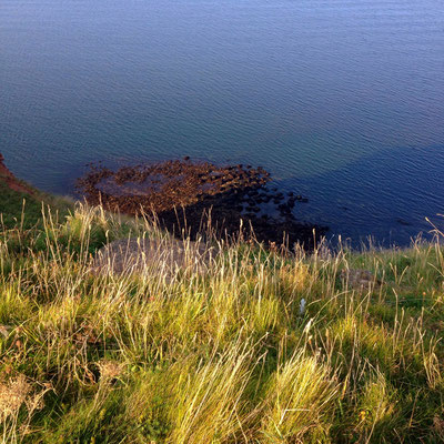 The sea, seen from Helgoland