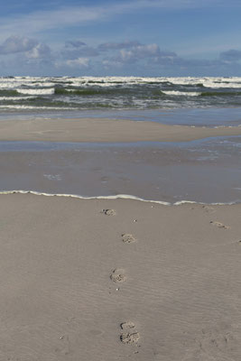 Spuren im Sand mit Meer