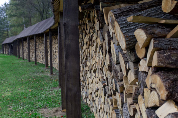 huge woodpile