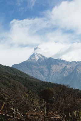 Looking at the fishtail mountain, Mardi Himal Trek, Nepal