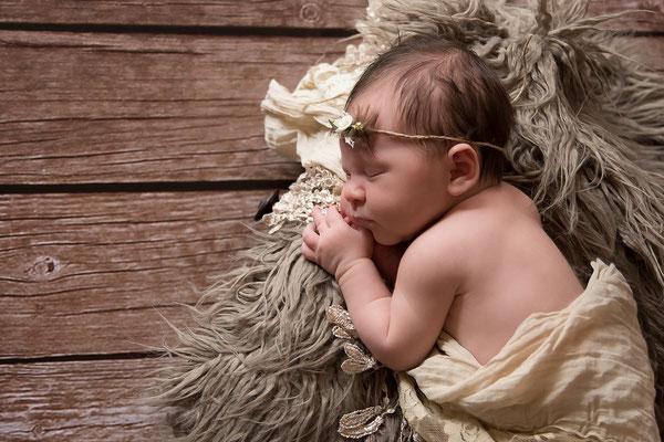Neugeborenbilder in Dillingen