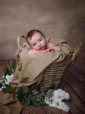 Babybilder Dillingen/Saar