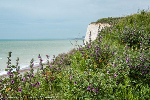 An der Küste in der Nähe von Brighton