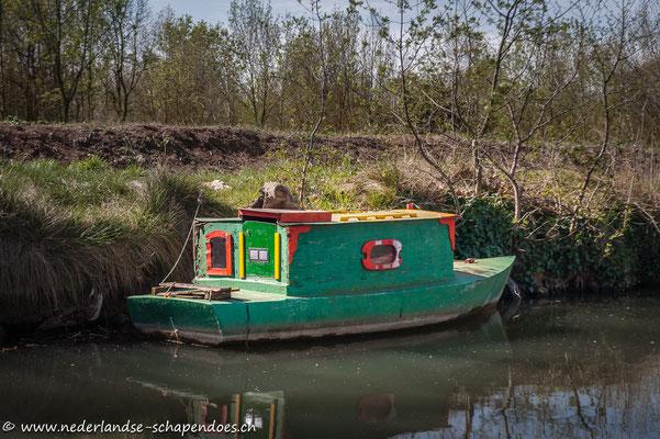 Womöglich die kleinste Péniche auf dem Canal...
