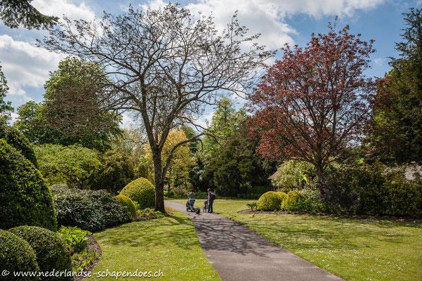 Mit Kind und Hunden in den West Dean Gardens