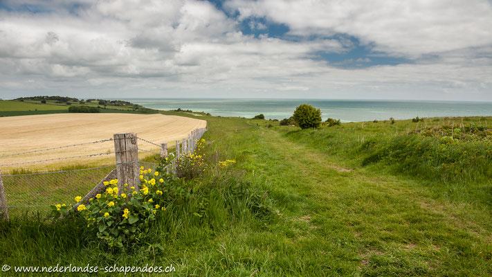 Auf dem Saxon Shore Way zwischen St. Margaret`s-at-Cliffe und Kingsdown