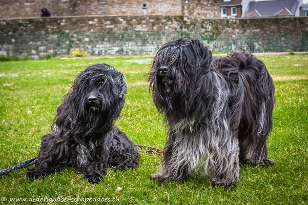 Mouche und Briana vor Deal Castle