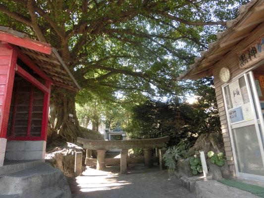黒神神社にある埋没鳥居