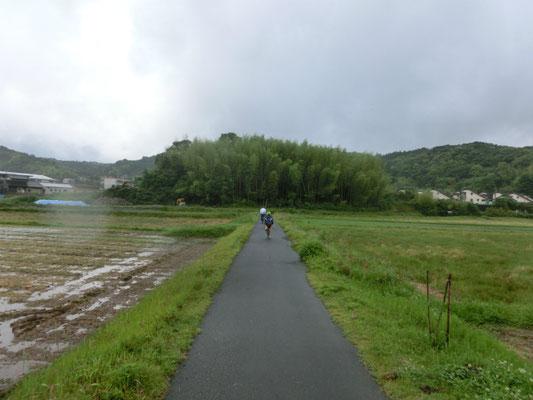 5月 例年より早い梅雨入り。田の神を巡る