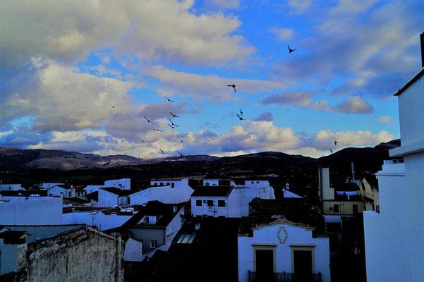 Blick vom Hotel Catalonia
