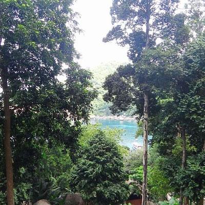 Mango Bay, Ko Tao