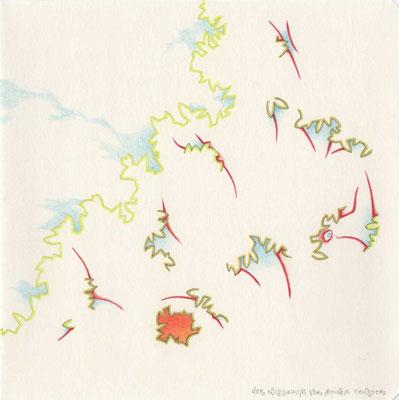 DER NUSSBAUM VOR MEINEM FENSTER / 19,5 x 19,5 cm / 2011 / buntstift auf papier