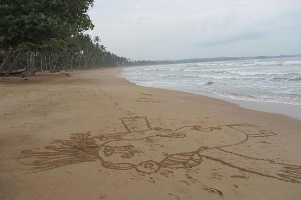 GHANA impression 2011/12 / ... davon inspiriert fertige ich große sandbilder an, ...