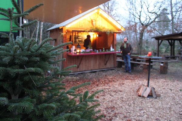 Unsere Harzer Wald-Hütte. Harzer Tanne