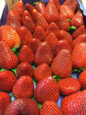 Deutsche Eis Akademie Erdbeeren