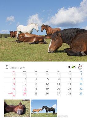 ばんえい競馬カレンダー9月