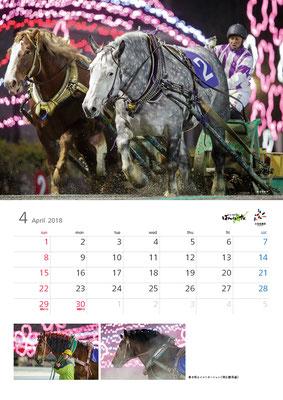 ばんえい競馬カレンダー4月