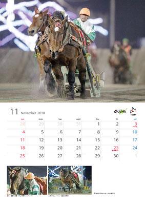 ばんえい競馬カレンダー11月