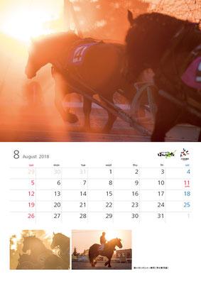 ばんえい競馬カレンダー8月