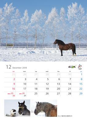 ばんえい競馬カレンダー12月
