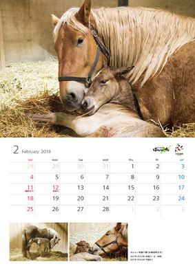 ばんえい競馬カレンダー2月