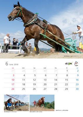 ばんえい競馬カレンダー6月