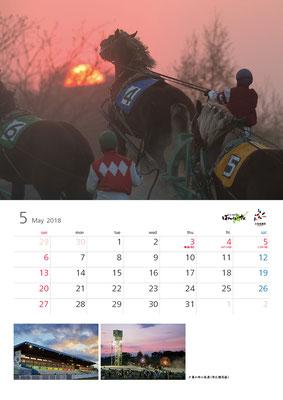 ばんえい競馬カレンダー5月