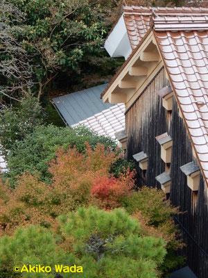 大森町の家並み。