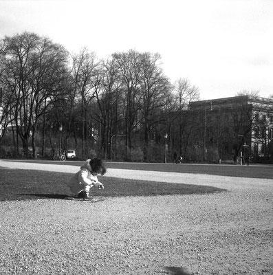 Am Königsplatz in München