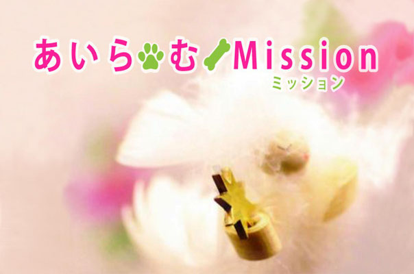 https://www.bestposition.info/ゆめのたねラジオ放送局-あいら-む-mission/