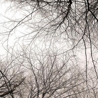 Seepromenade Rorschach – Berührungen IV