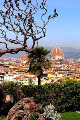 Florence, Italie 56