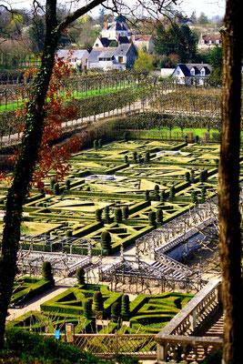 Château de Villandry, La Loire 104