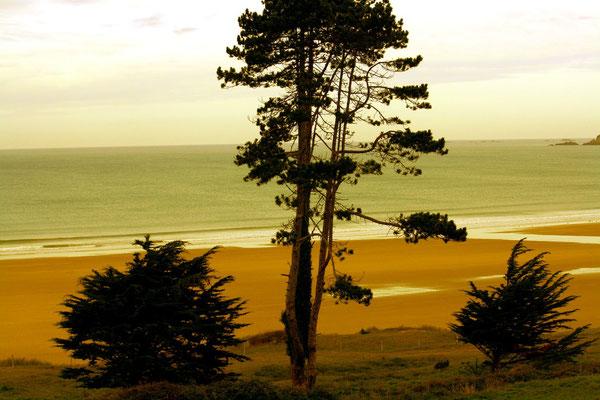 Erquy, Bretagne 8