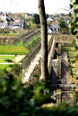 Château de Villandry, La Loire 108