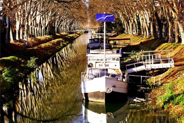 Le canal, Toulouse 12