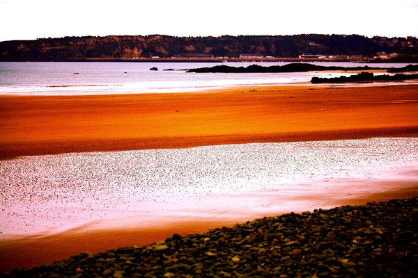 Erquy, Bretagne 17