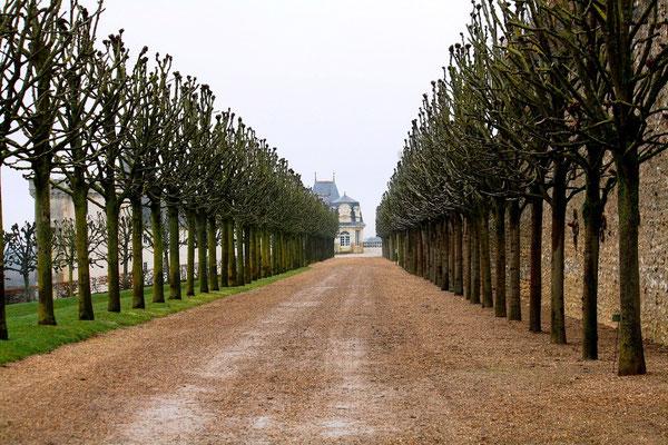 Château de Villandry, La Loire 42