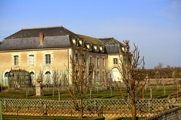 Château de Villandry, La Loire 118